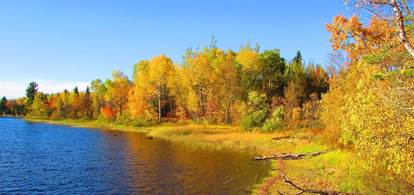 Lac La Croix First Nation lake and trees in the autumn