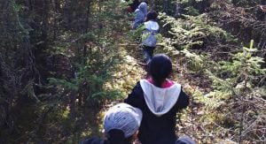 Students walking through a forest