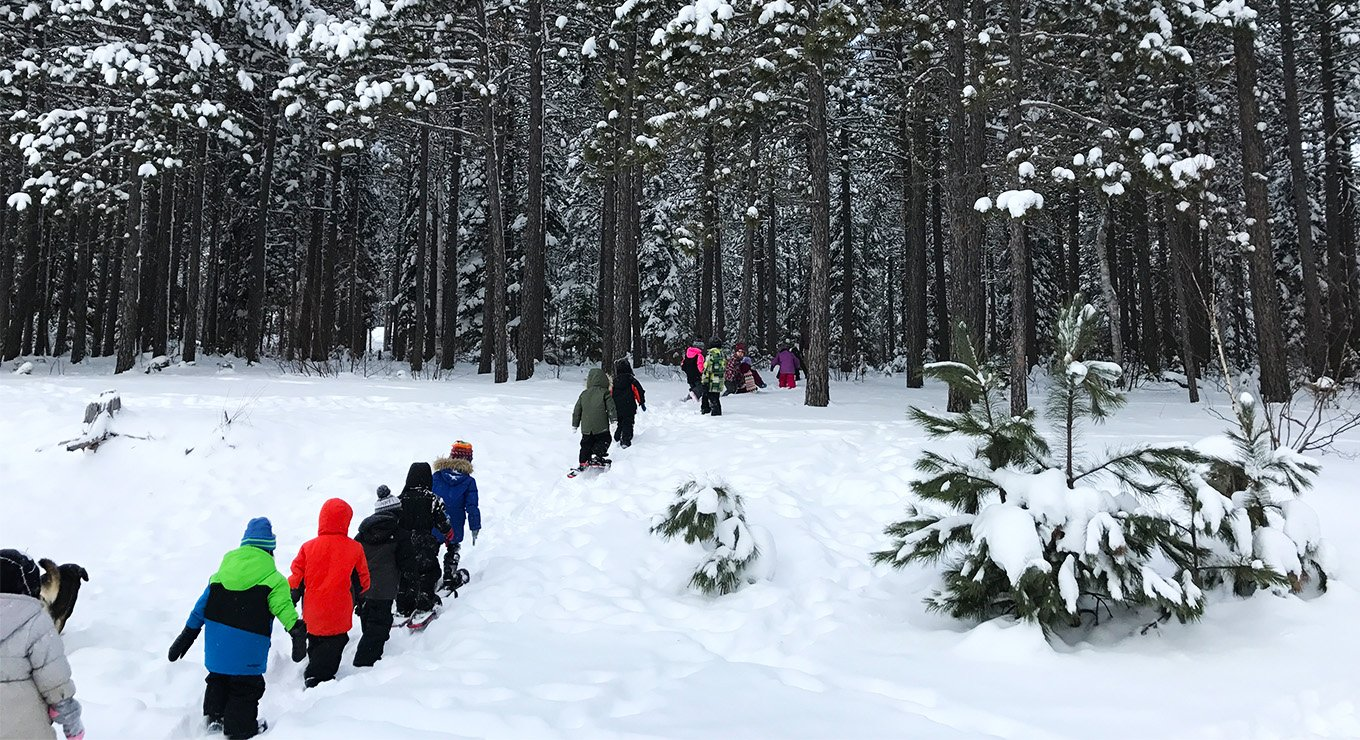 Kids walking in the snow toward a forest