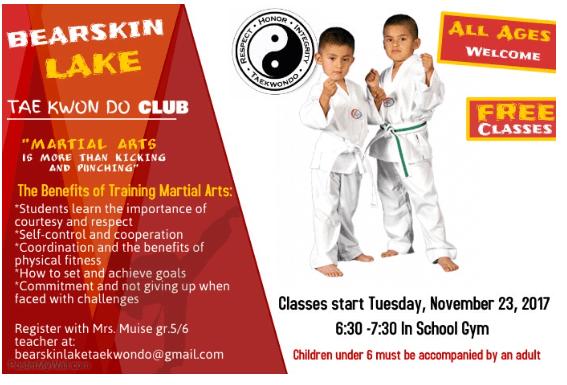 Taekwondo Course Poster