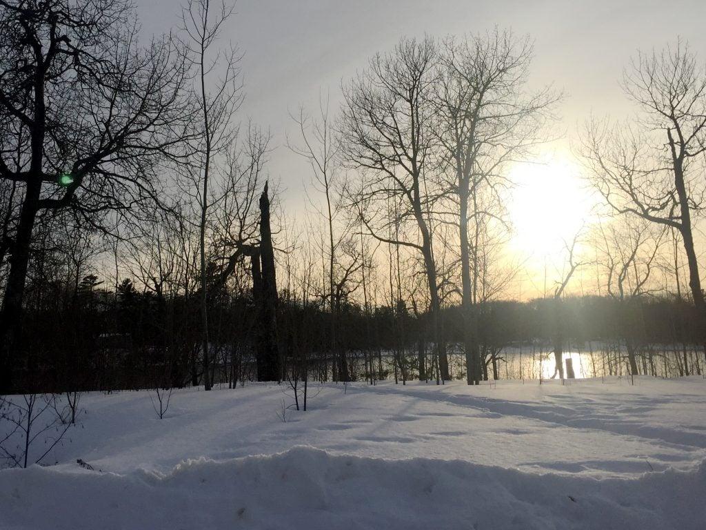 Scenery in Lac La Croix
